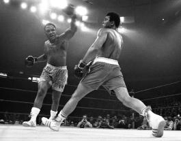 boxer-feet-superJumbo